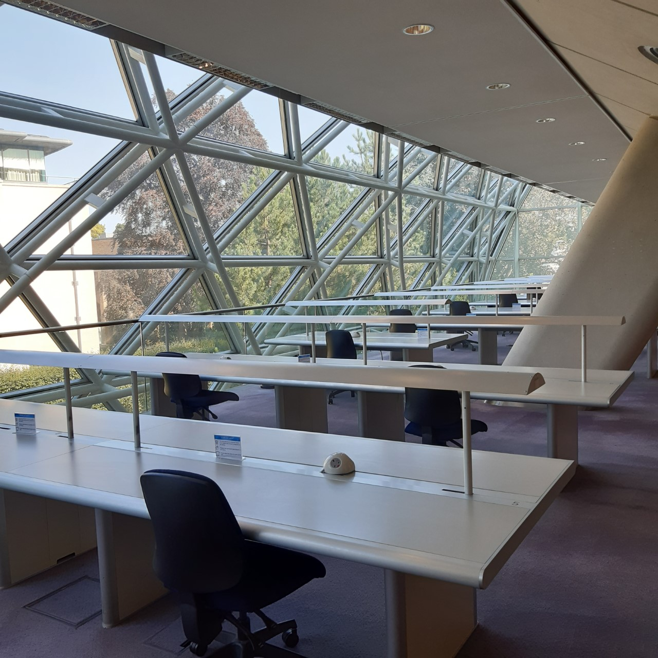Squire Law Library: Book a Visit