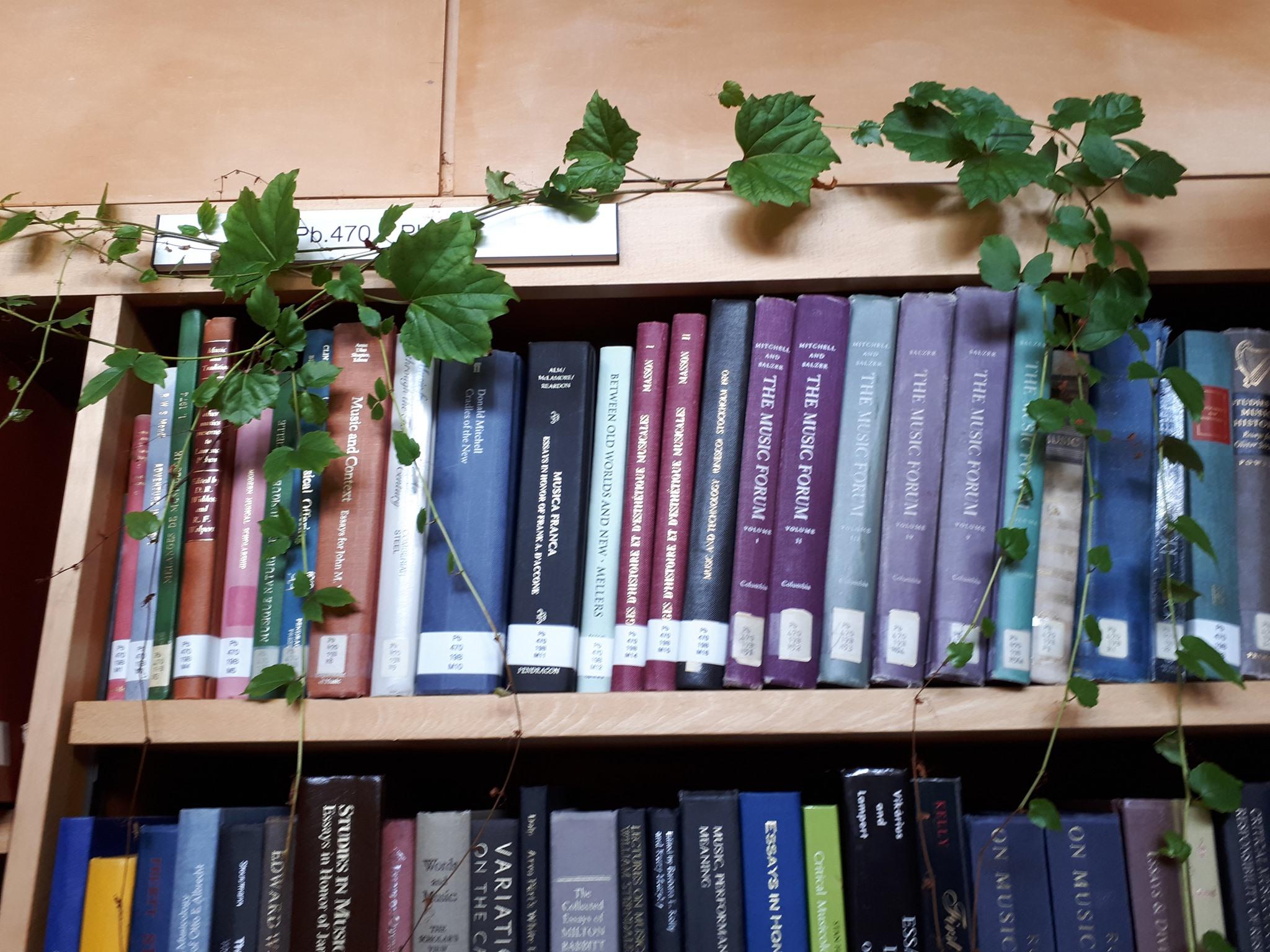 Pendlebury Library Tour