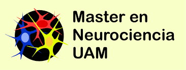 Máster Universitario en Neurociencia
