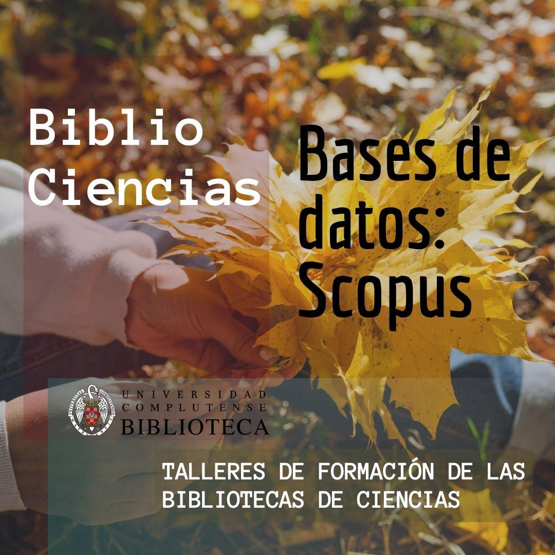 Bases de datos: Scopus
